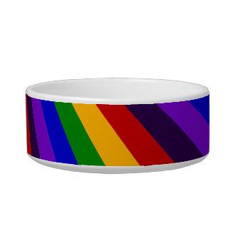 Ride the Rainbow Slide Colorful Stripes Cat Food Bowls
