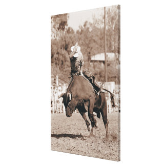 Rider about to fall off bucking bull stretched canvas prints