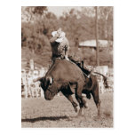 Rider about to fall off bucking bull postcard