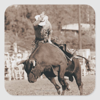 Rider about to fall off bucking bull sticker