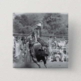 Rider hanging on to bucking bull 2 pinback button