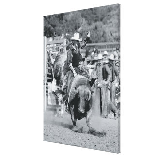 Rider hanging on to bucking bull stretched canvas print