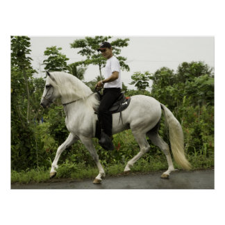 Rider On Horse Poster