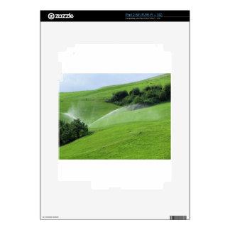 Ridge en pasto alpino con las regaderas de la iPad 2 skin