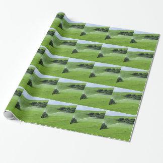 Ridge en pasto alpino con las regaderas de la papel de regalo