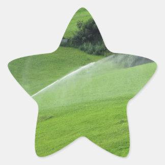 Ridge en pasto alpino con las regaderas de la pegatina en forma de estrella