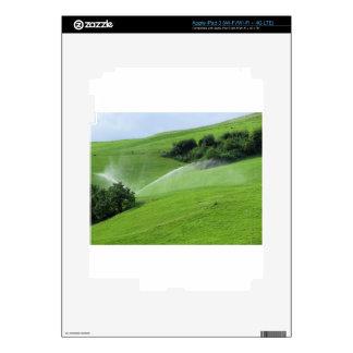 Ridge en pasto alpino con las regaderas de la pegatinas skins para iPad 3