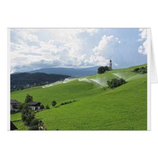 Ridge en pasto alpino con las regaderas de la tarjeta de felicitación