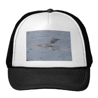 Ridge of Ice Trucker Hat