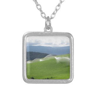 Ridge on alpine pasture with grass sprinklers necklaces