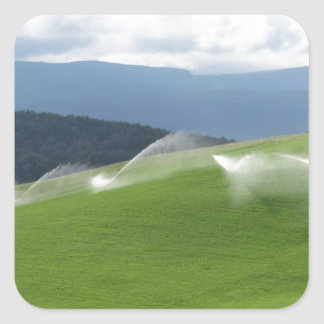 Ridge on alpine pasture with grass sprinklers square sticker