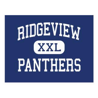 Ridgeview - Panthers - High - Orange Park Florida Postcard