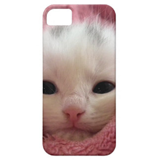 Ridiculously Cute White Kitten in a pink blanket. iPhone 5 Covers