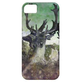 Ridiculously Photogenic Deer iPhone SE/5/5s Case