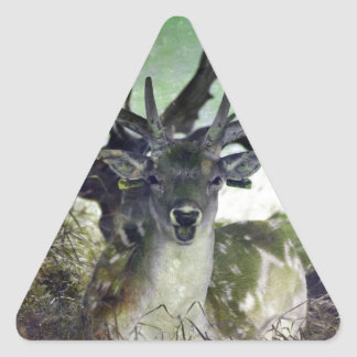 Ridiculously Photogenic Deer Triangle Sticker