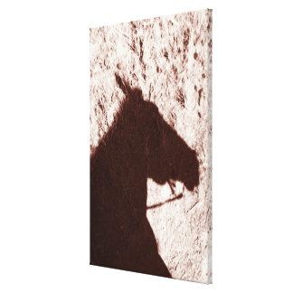 riding horse's head shadow on trail floor Jasper Canvas Print