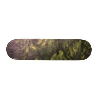 Riding Thr The Jungle Skateboard