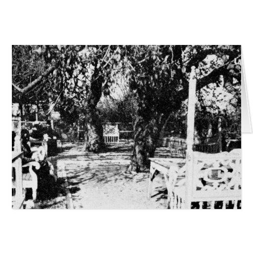 Ridvan Garden, ca. 1907 (01) Card