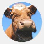 Riendo vaca pegatina redonda