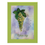 Riesling Wine Grapes Poster