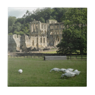 Rievaulx Abbey, Yorkshire, UK Ceramic Tile