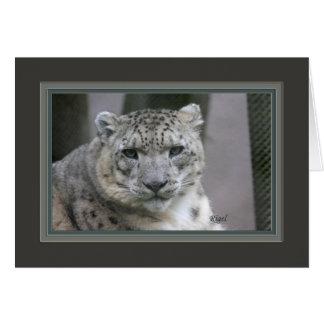 Rigel la nieve leopard_2685 tarjeta de felicitación