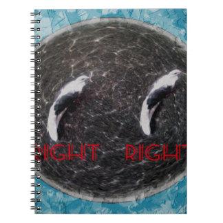 RIGHT BIRD M SPIRAL NOTEBOOKS