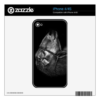 right following decals for the iPhone 4S