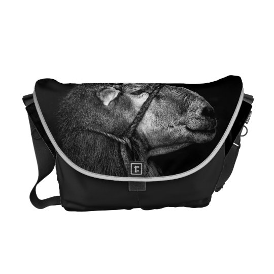 right following messenger bag