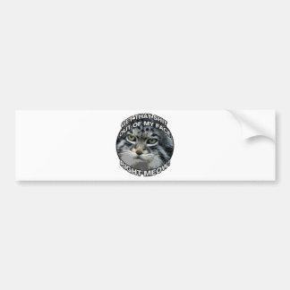 Right Meow! Bumper Sticker