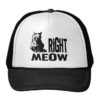 Right MEOW! Funny Evil Kitty Mesh Hats