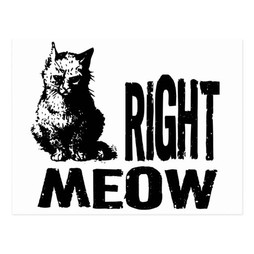 Right MEOW! Funny Evil Kitty Post Card