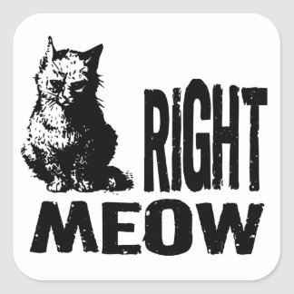 Right MEOW! Funny Evil Kitty Square Sticker
