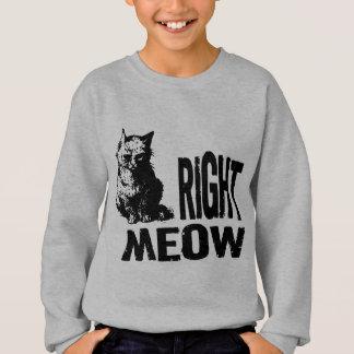 Right MEOW! Funny Evil Kitty Sweatshirt
