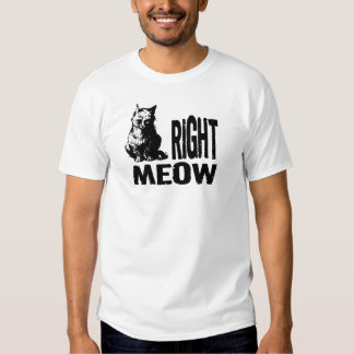 Right MEOW! Funny Evil Kitty T Shirt