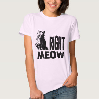 Right MEOW! Funny Evil Kitty T-Shirt