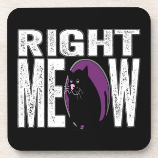 Right MEOW! Funny Kitty Cat Language Beverage Coaster