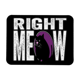 Right MEOW! Funny Kitty Cat Language Rectangular Photo Magnet