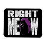 Right MEOW! Funny Kitty Cat Language Vinyl Magnet