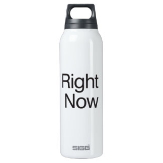 Right Now 16 Oz Insulated SIGG Thermos Water Bottle