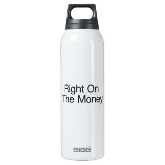 Right On The Money 16 Oz Insulated SIGG Thermos Water Bottle