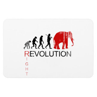 RIGHT REVOLUTION Faded png Flexible Magnet
