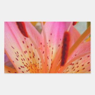 Right Tilt Pink Lily Rectangular Sticker