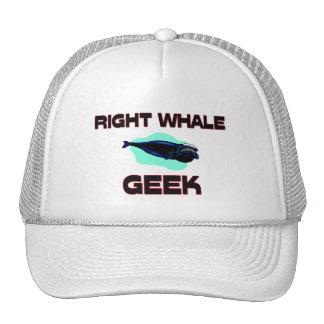 Right Whale Geek Trucker Hat