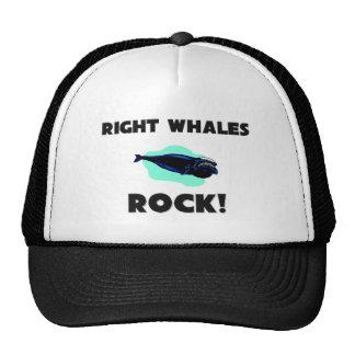 Right Whales Rock Trucker Hat