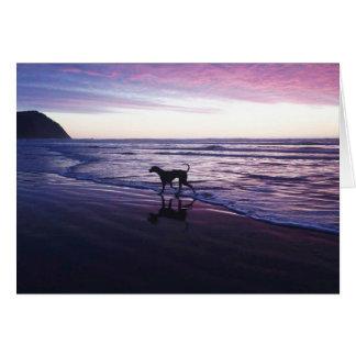 """""""Riley Brown"""" great dane en la puesta del sol Tarjeta Pequeña"""