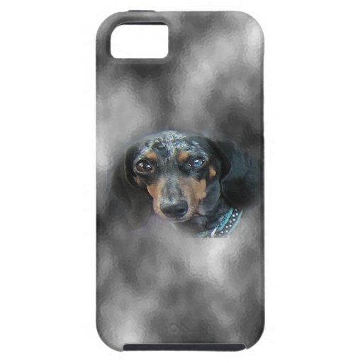 Riley iPhone 5 Cases