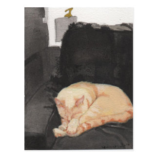 Riley the Cat takes a Nap Postcard