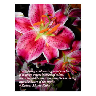 Rilke Quote Stargazer Lilies Postcard