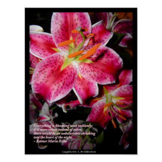Rilke Quote Stargazer Lilies Poster